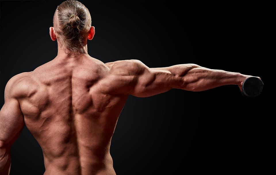Čo je to cyklovanie bielkovín alebo ako na nárast svalovej hmoty